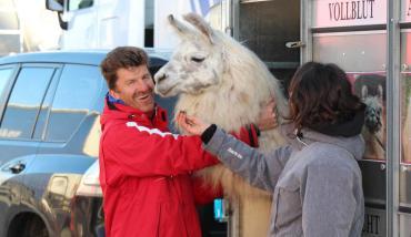 importing llamas